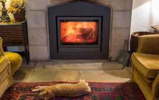 How Carpet Can Save You Money and Keep Warm This Winter